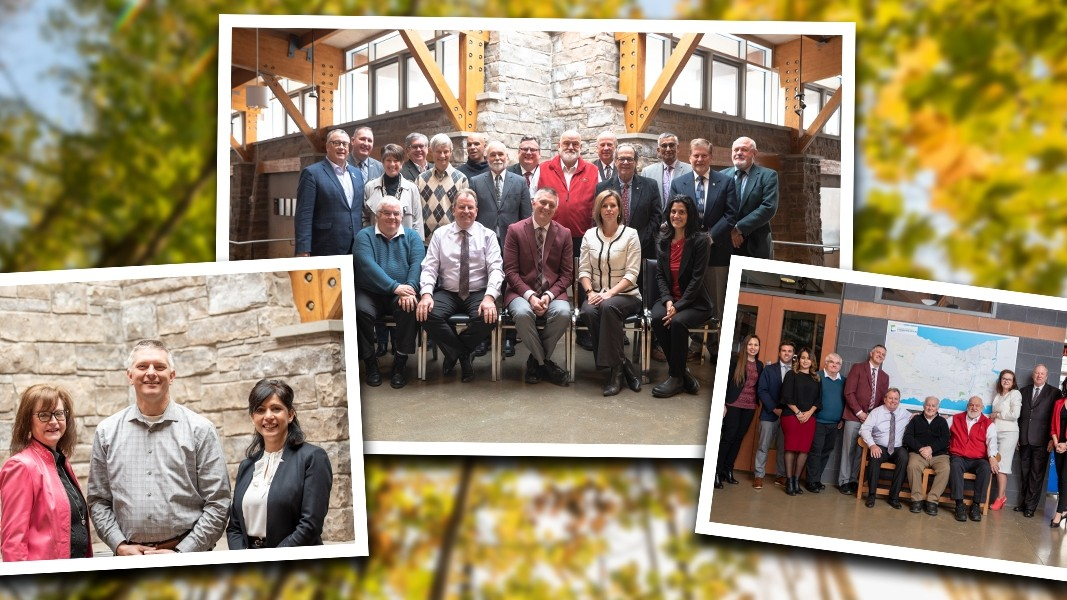Collage of photos including board of directors, CAO and staff in a yellow flower background