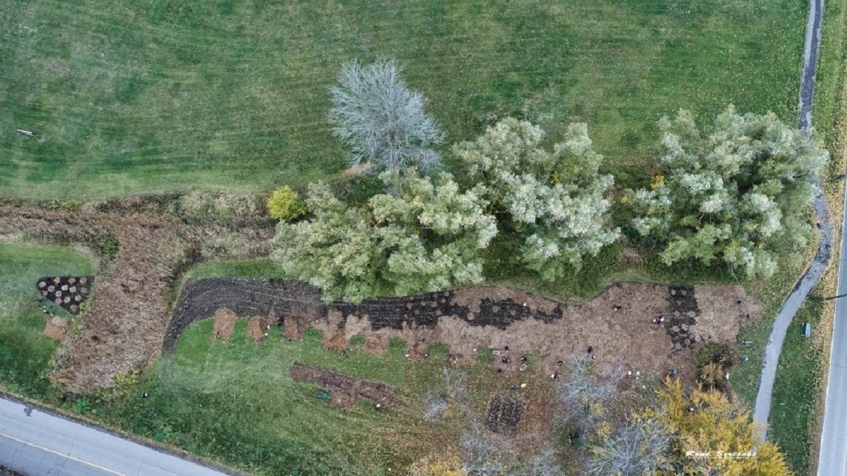 Aerial view of planting by NPCA and FOMC. Trees and shrubs in green space and land.