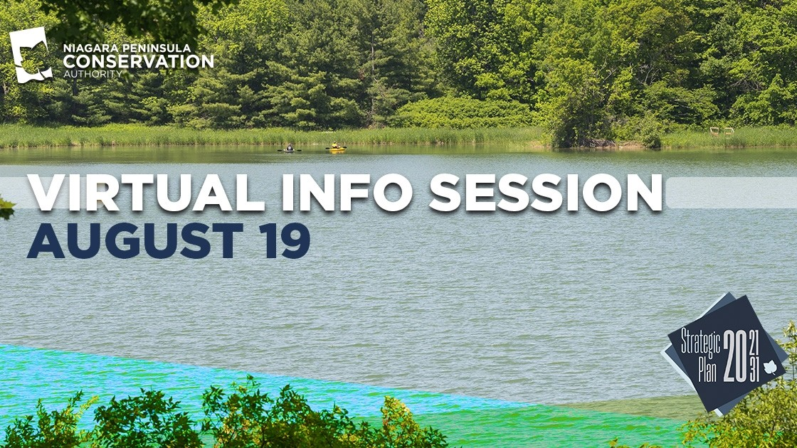 Photo of Lake Niapenco- Virtual Info Session August 19