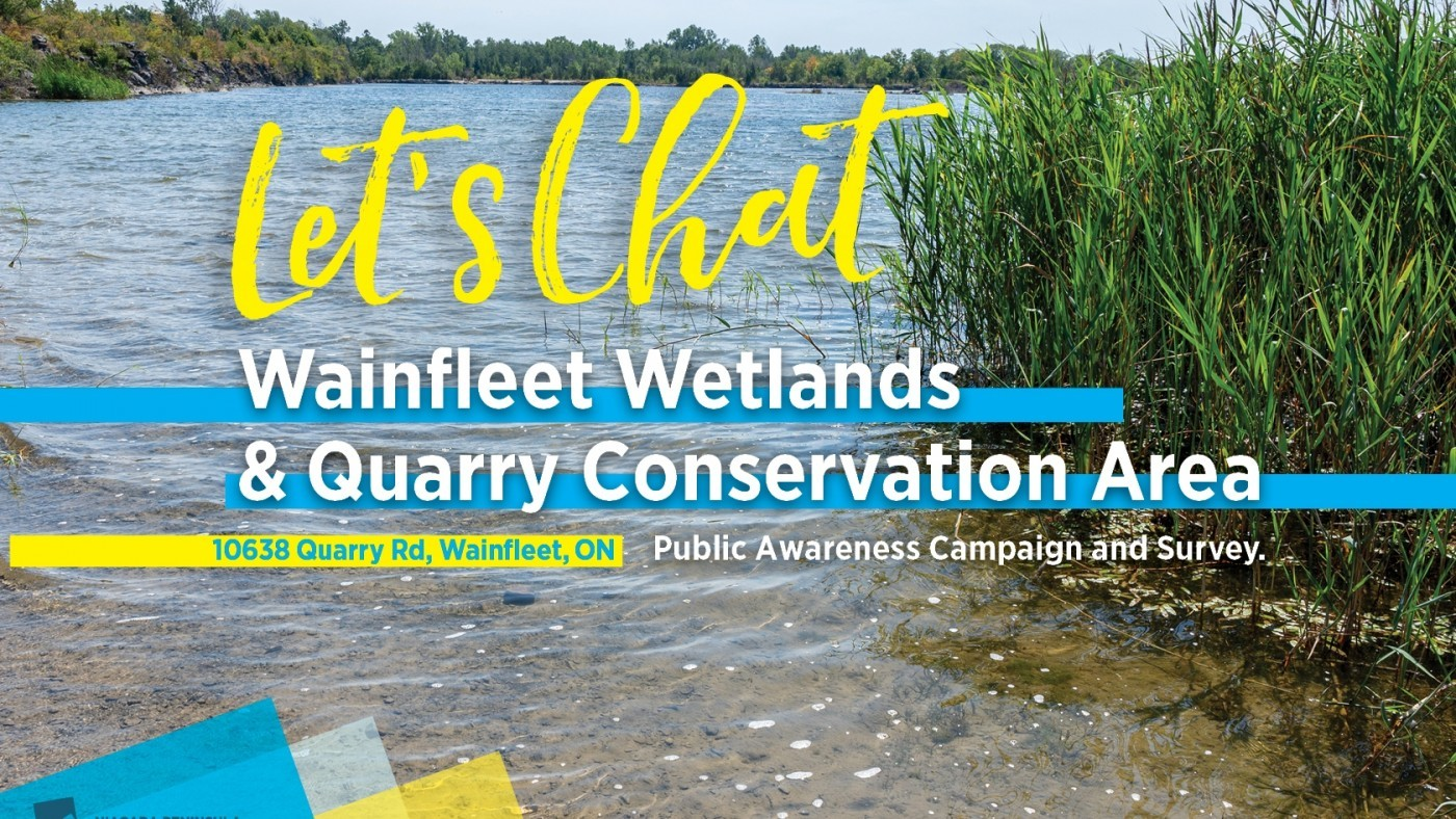 Poster in yellow and blue with background of blue water at Wainfleet Wetlands property- Let's Chat Wainfleet