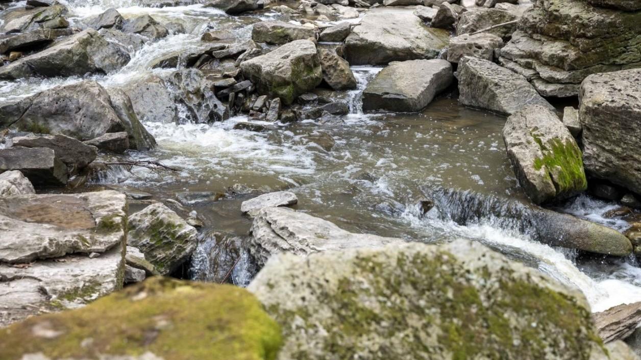 creek in niagara region