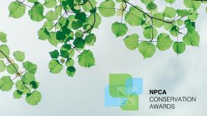 Tree branch and award logo