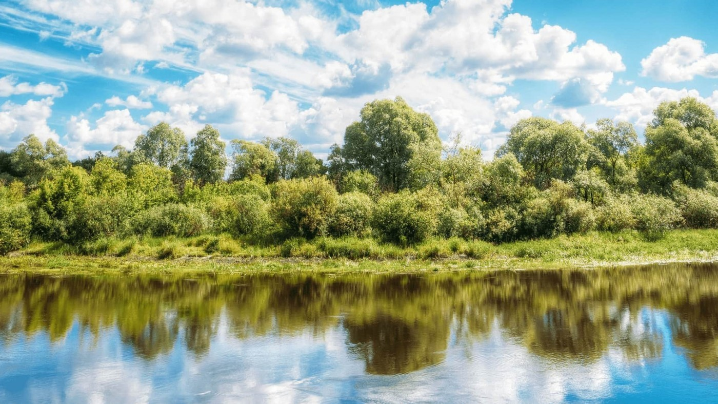 Header Photo NPCA- Green trees surrounded by clear water and blue skies
