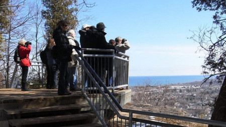 Group of bird watchers look out to Grimsby escarpment