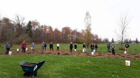 Photo of Volunteers Planting Trees- Big Group gathered around green space and trees