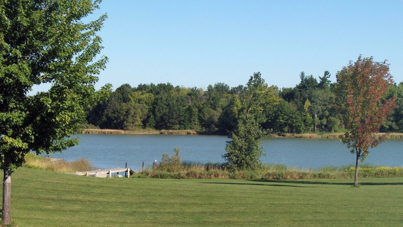 Scenic photo of Binbrook Conservation Area, trees and grass