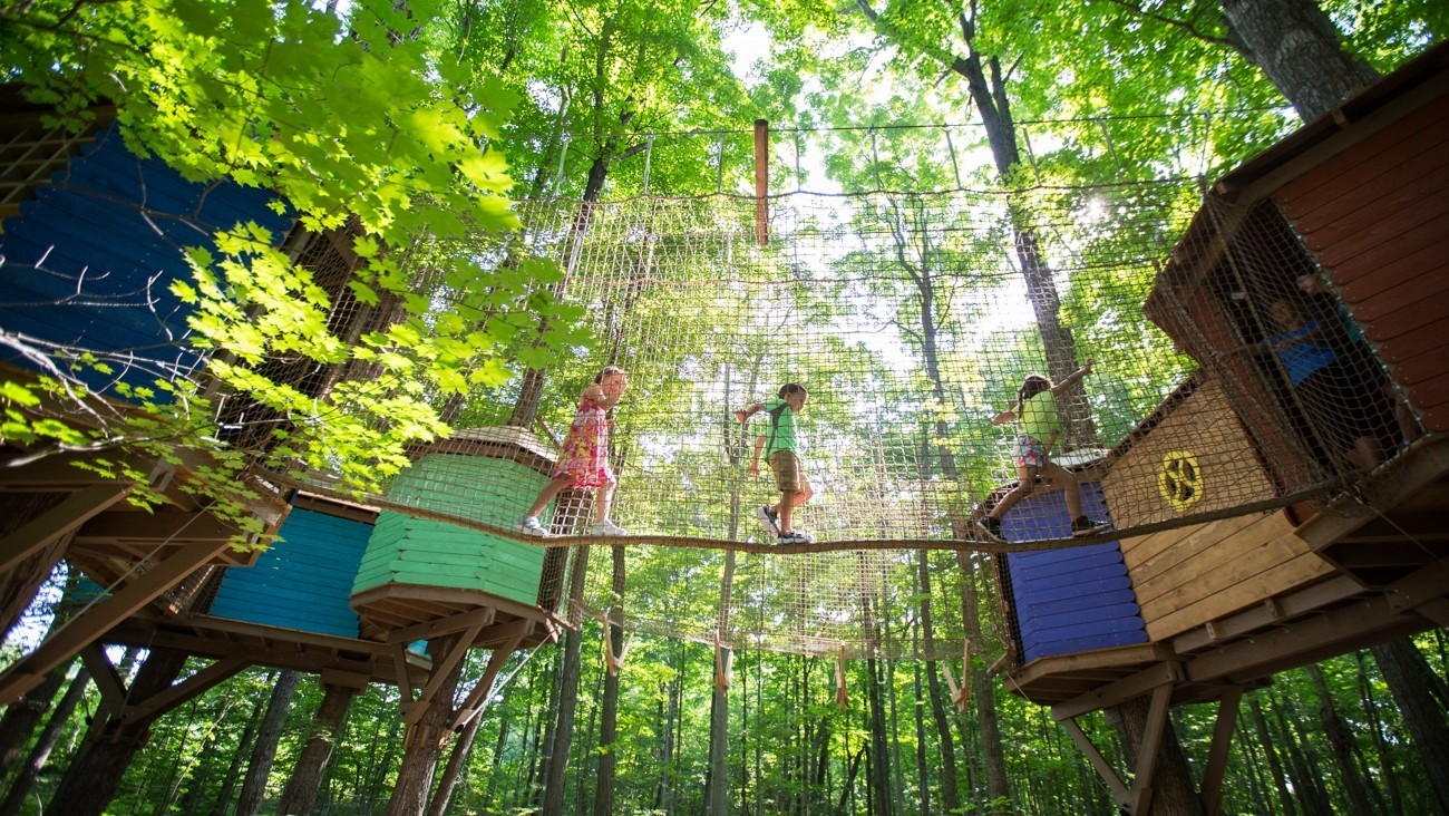 Treewalk village at Binbrook- small colourful houses, kids crossing on ropes