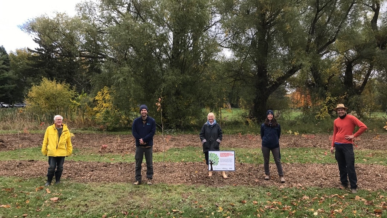 Restoration tree planting in niagara on the lake with friends of one mile creek