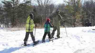 cross country ski npca