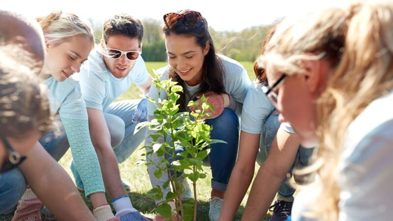 Group of people planting trees