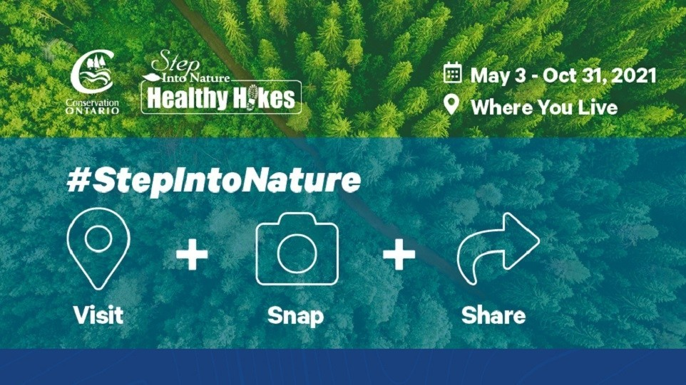 Healthy Hikes 2021 Graphic, green trees, pink and purple border, social media icons