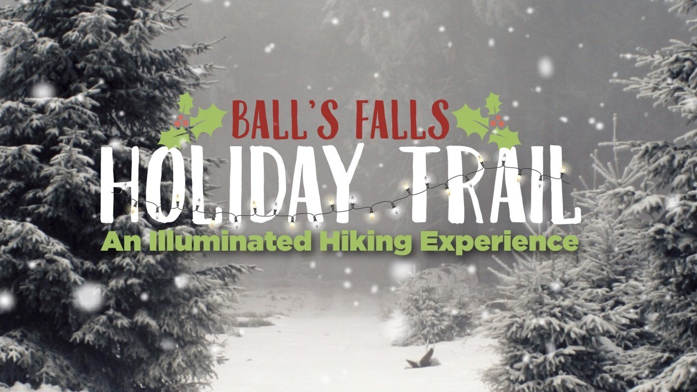 Holiday trail photo. Trees surrounded by snow and snowflakes