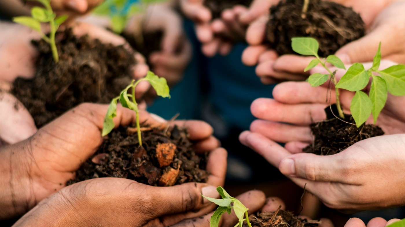 A circle of hands with dirt and plants