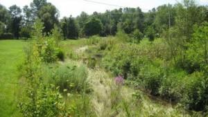 instream habitat to improve watercourse