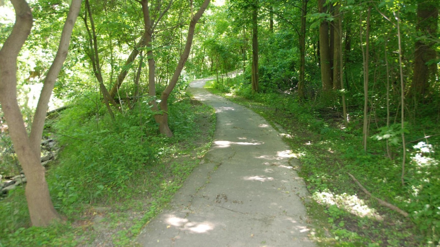 Hiking trail surrounded by greenery- Two Mile Creek Conservation Area